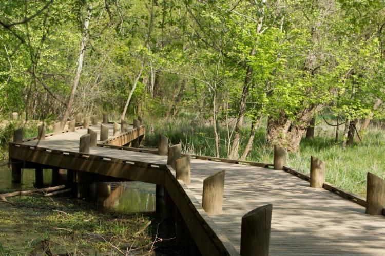 6 Family Friendly Hikes Near Springfield National Trails Day