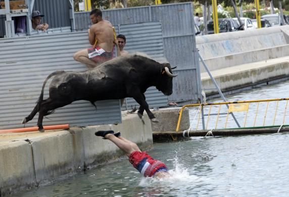 "A bull jumps into the sea while chasing a reveler during the ""Bous a la Mar"" festival in the eastern Spanish coastal town of Denia July 7, 2014. During this festival, revelers emerging from protective barriers provoke bulls to chase them until they both fall into sea. The bulls are then rescued by small boats that tow them to safety. REUTERS/Heino Kalis"