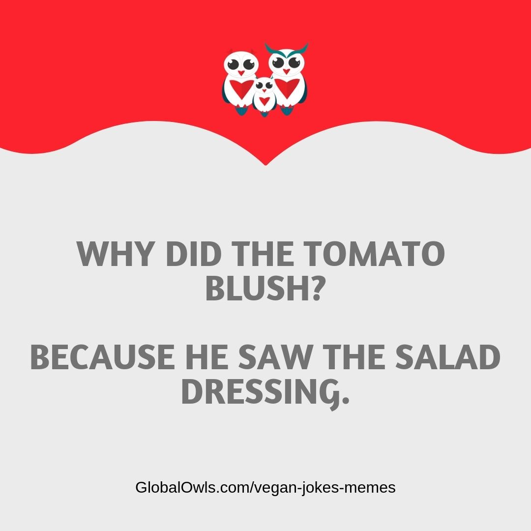 Top Vegan Jokes And Memes That Ll Make You Lol Vegan Jokes Jokes Vegan Memes