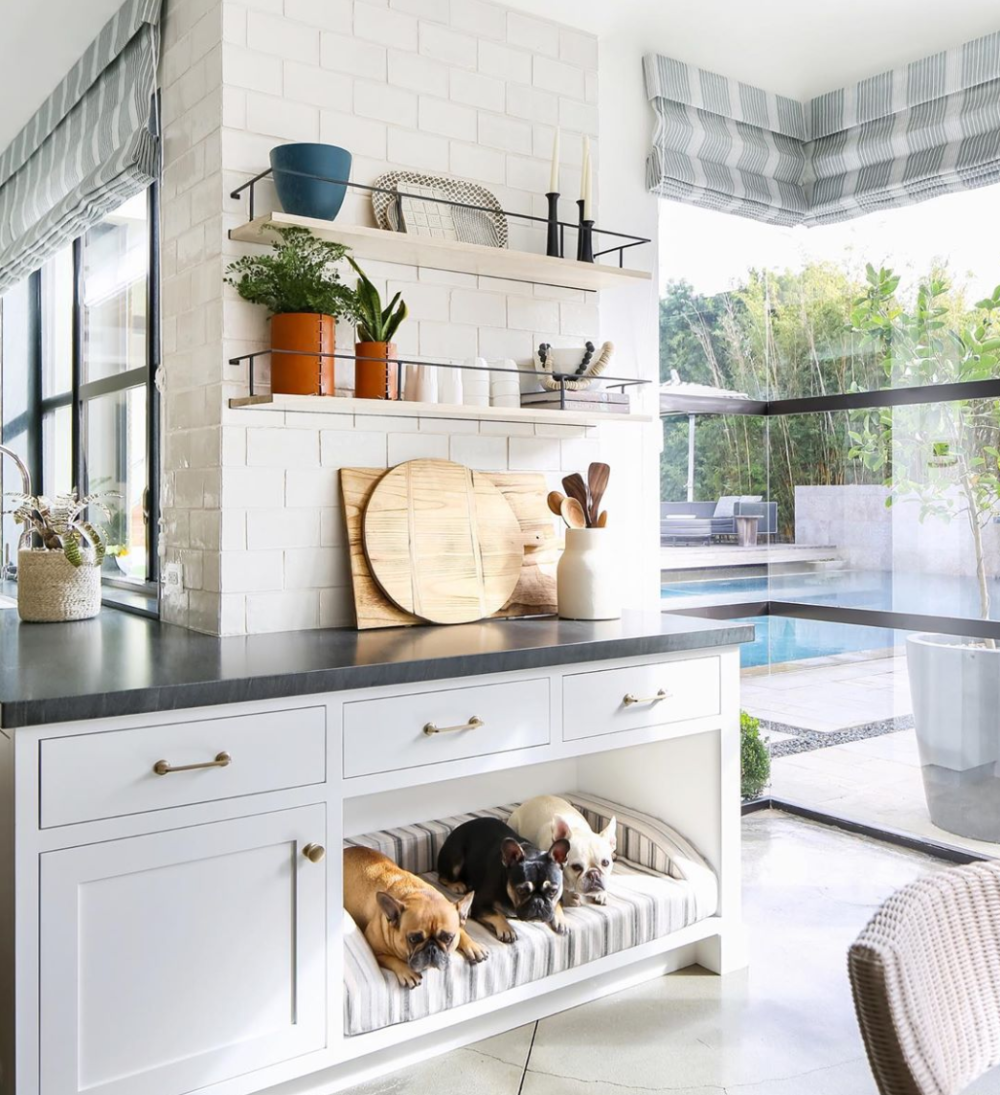 Dogs & Design Round Up — Farmhouse Living  Dog home decor, Built