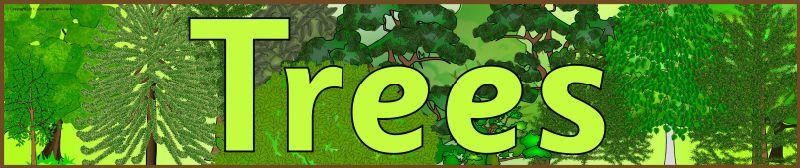 Trees display banner (SB3921) - SparkleBox | Display ...