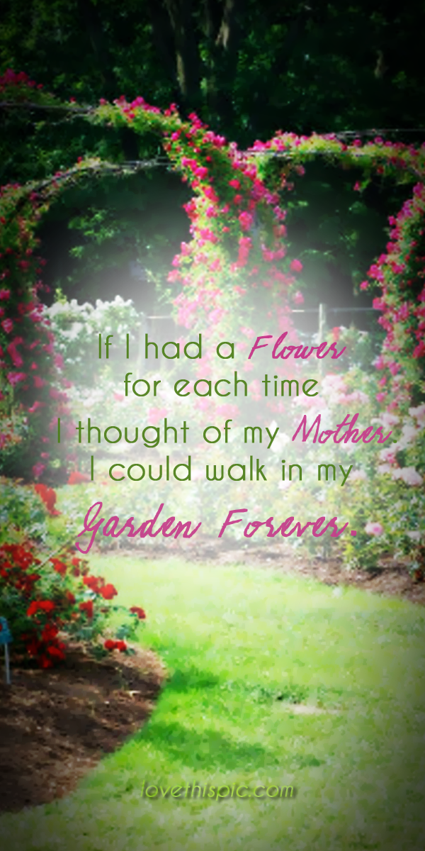 If I had a flower quotes flowers truth thoughts garden ...