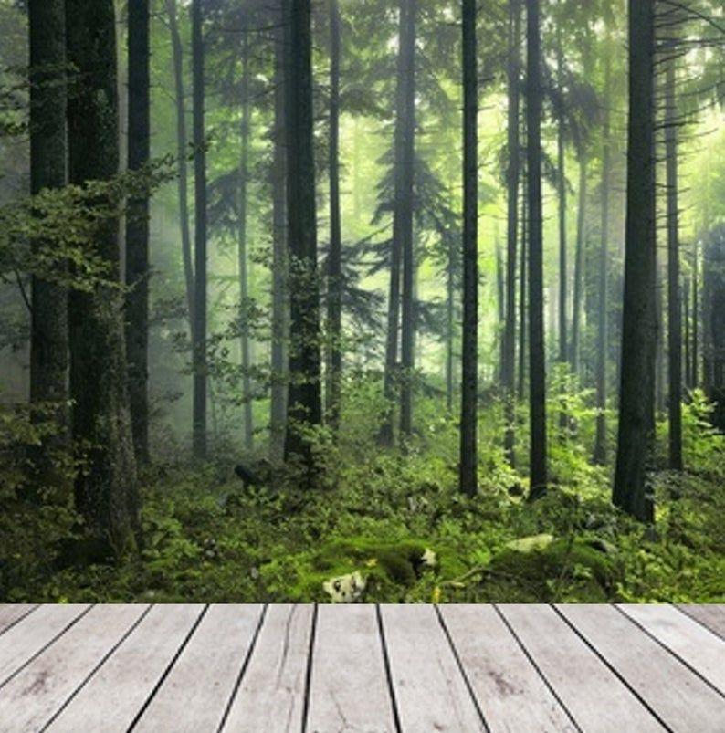 Dark Green Misty Forest Wall Mural Wallpaper Peel And Stick Etsy In 2021 Forest Wall Mural Misty Forest Forest Wallpaper
