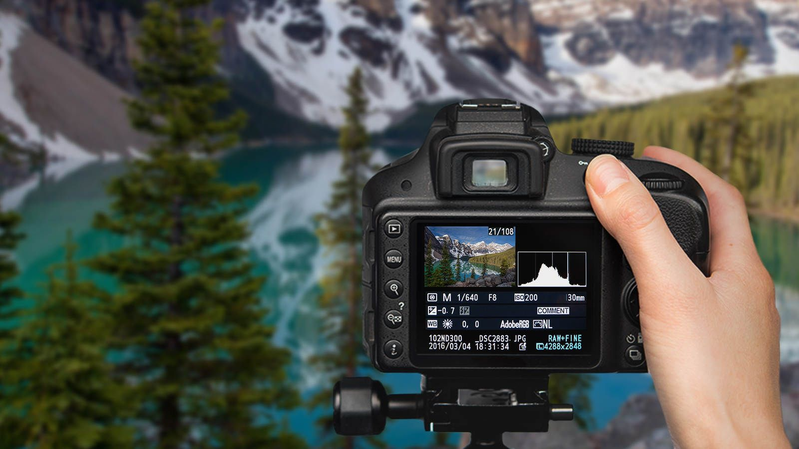 Courses photography digital online