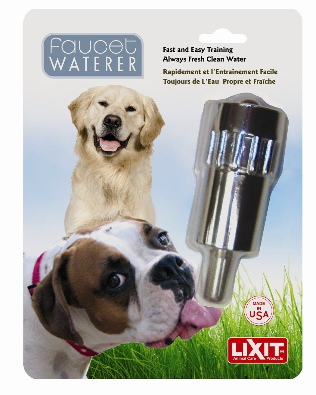 Pet Self Waterers : Amazon.com: Lixit Outside Faucet Dog Waterer ...