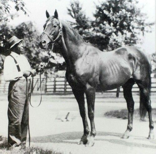 Man O'War With Will Harbut. Man O'War Died Shortly After
