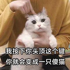 Photo of 喵喵喵??