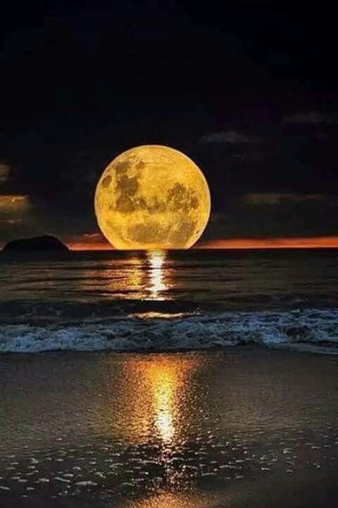 Pin By Deborah England On Luna