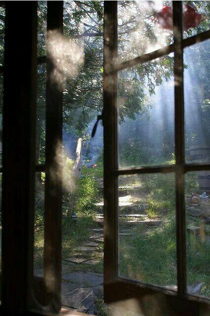 Beautiful Background Window View Windows Through The Window