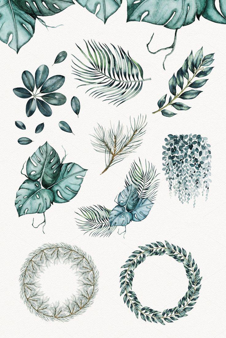 Watercolor Plants by Spasibenko Art on Creative Market  ArtKunst