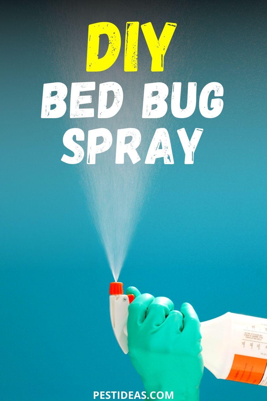 Diy bed bug spray in 2020 bed bug spray bed bugs