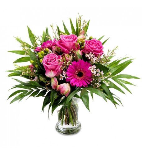 Kleine rosa Schönheit von #Rosen blühen für #Muttertag ...