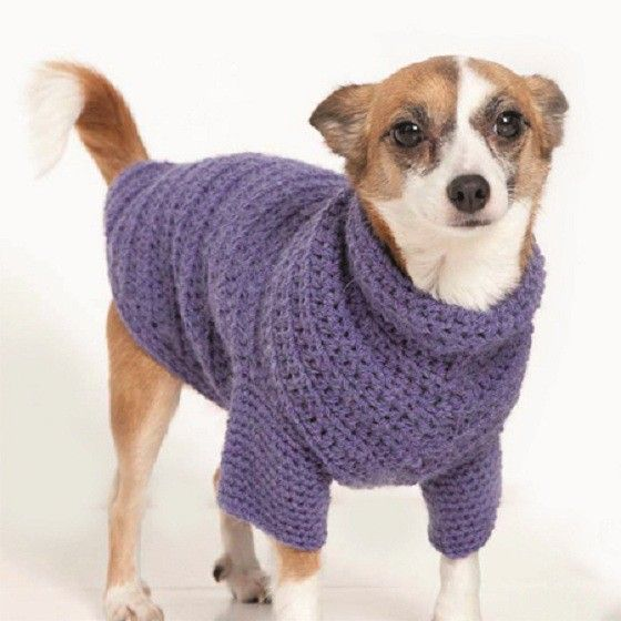 Dog Coat Crochet Pattern | Ideas for my furry babies | Pinterest ...