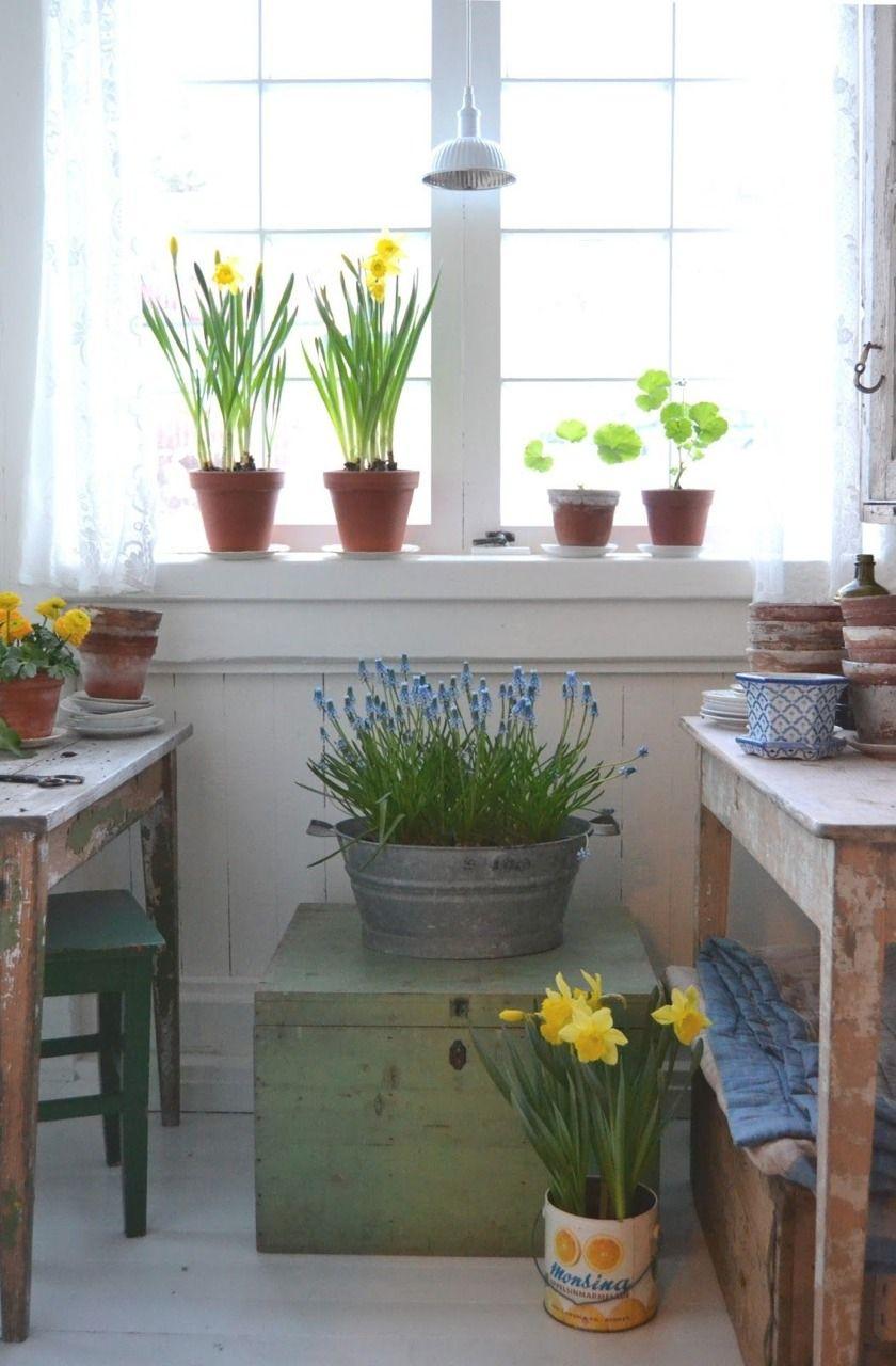 Ana Rosa Fresh farmhouse, Little gardens, Garden