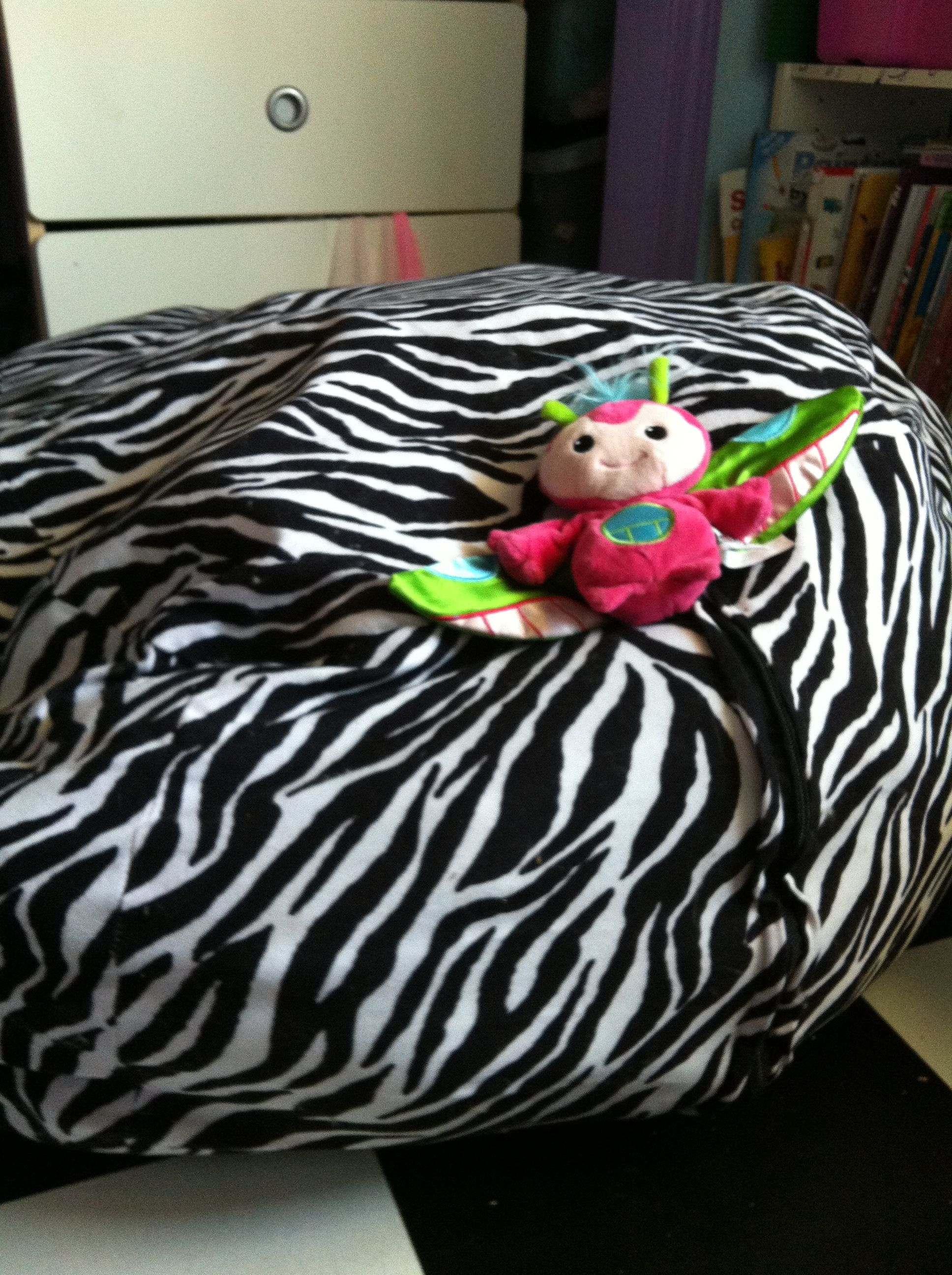 A bean bag makes excellent stuffed animal storage for that