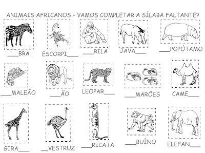 Blog da Delma: Animais Africanos | Animais africanos, Animais ...