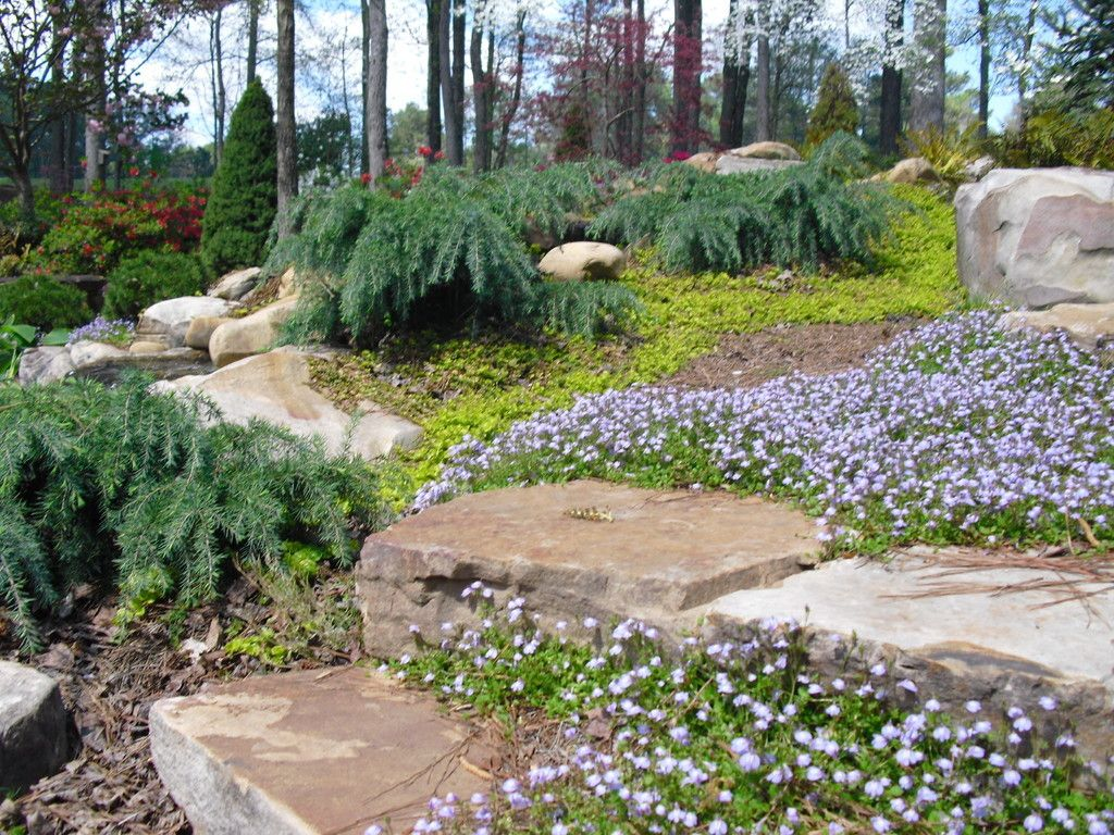 With Georgia Natural Scapes In Powder Springs Your Landscaping Or Gardening Project Is Always In The Right Hands Our Service Garden Projects Landscape Garden