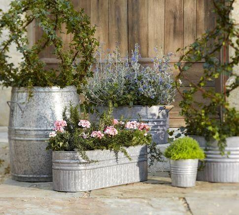 Container Gardens Garden Containers Garden Inspiration