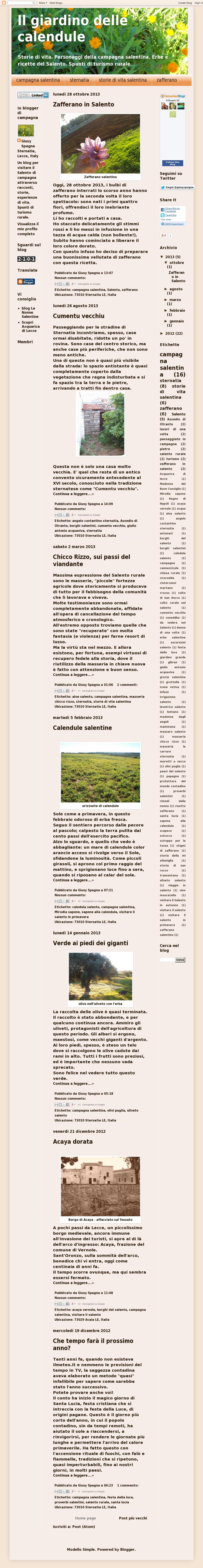 The website 'ilgiardinodellecalendule.blogspot.it' courtesy of @Pinstamatic (http://pinstamatic.com)