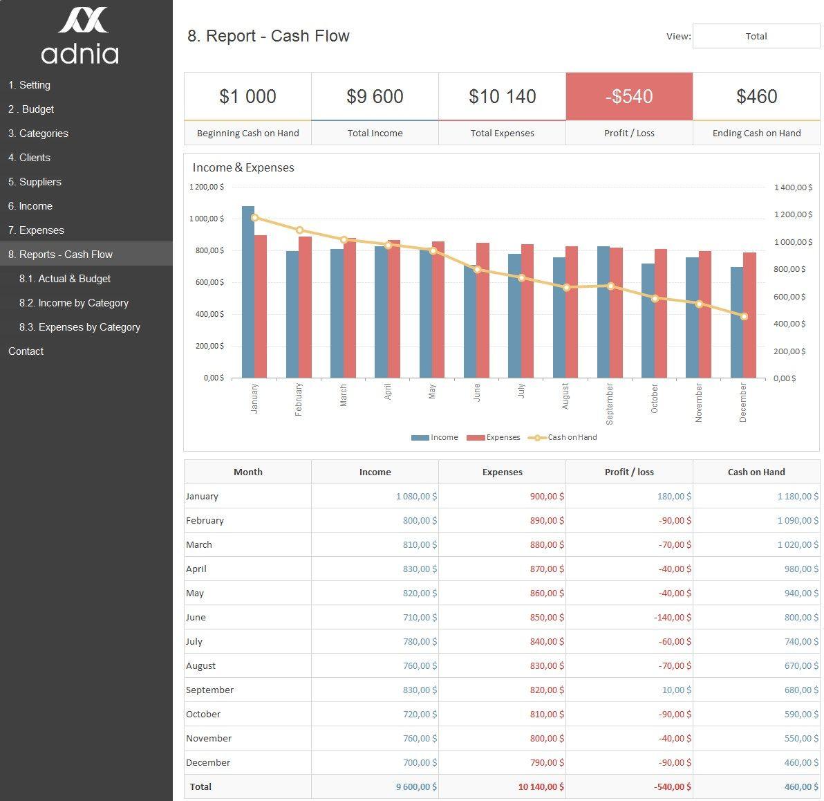 Business Finance Management Template Adnia Solutions