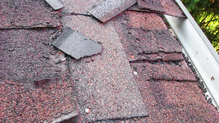 7 Warning Signs You Need A New Roof In 2020 Roof Roof Maintenance Roofing