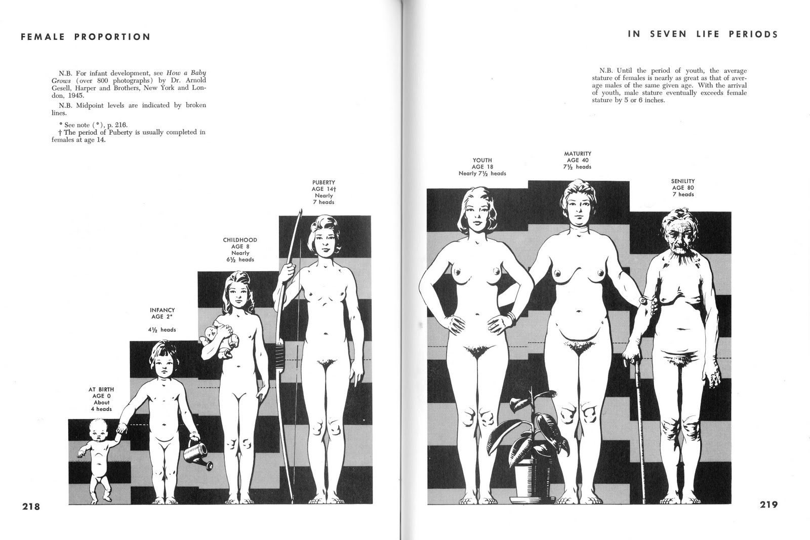 Female Proportion / These are from \