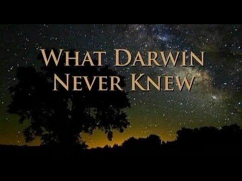 What Darwin Never Knew Nova Hd Youtube The Clover Pinboard Vi