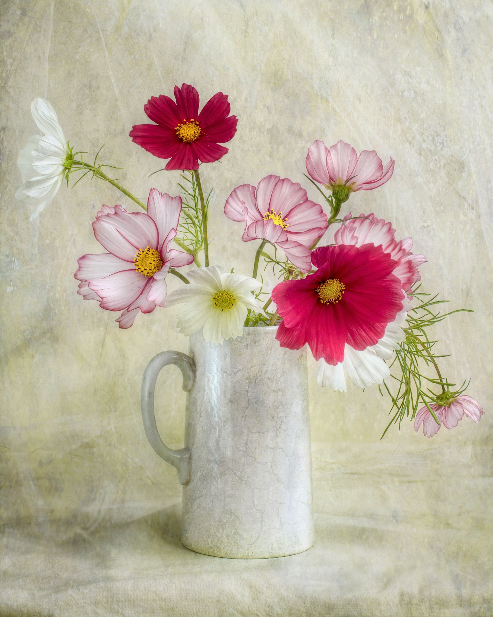 Cosmos Abstract Canvas Painting Canvas Wall Art Flowers