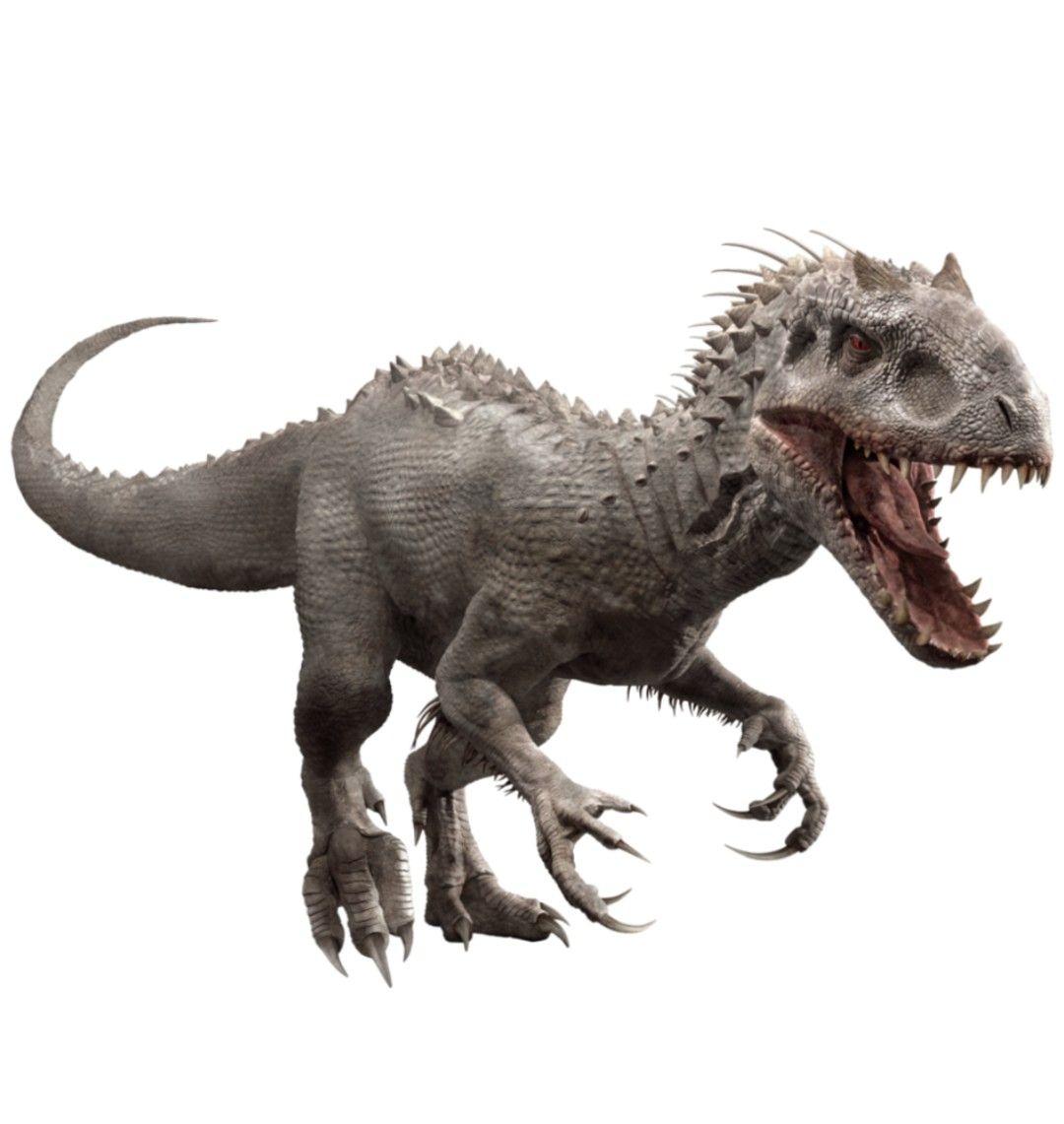 Pin Oleh David Tioc Di Jurassic Park World Dinosaurs Hewan Gambar Hewan Binatang Si ya lo estáis jugando, puede que os ahora ya sabéis cómo vender dinosaurios en jurassic world evolution para ps4, xbox one y pc. pin oleh david tioc di jurassic park