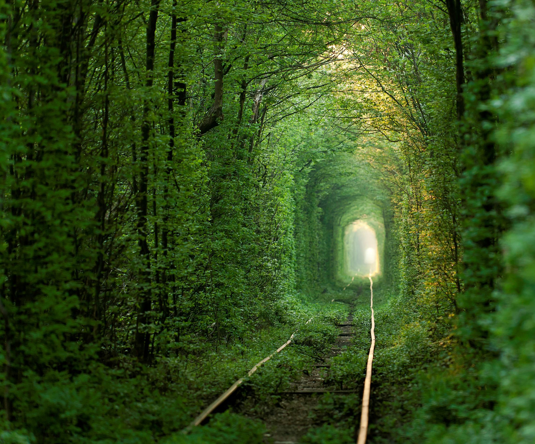 Tunnel of Love, Ukraine This beautiful tunnel looks like something out of a fairy tale. It's actually still used today - trains chug through it three times a day to deliver wood to a factory. It's believed that if couples who are truly in love