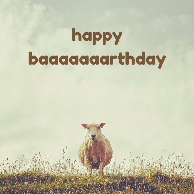 15 Must See Funny Birthday Wishes Pins: Funny Birthday Wishes For Your Family & Friends