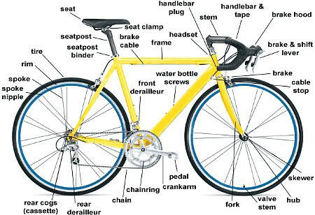 Bike Anatomy Let S Check If You Know The Parts Of Your Bicycle