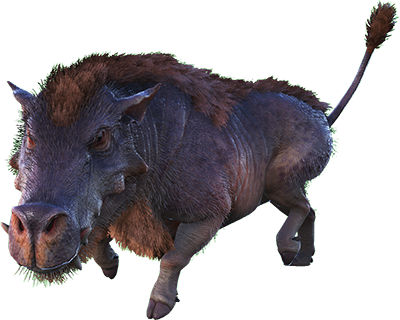 Ark Survival Evolved Daeodon Dododex Ark Survival Evolved Creatures Prehistoric Animals I have a unofficial server with my brothers, with maturation x5. ark survival evolved daeodon dododex