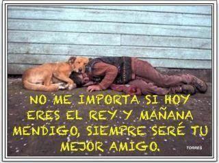 El Perro siempre será tu mejor amigo