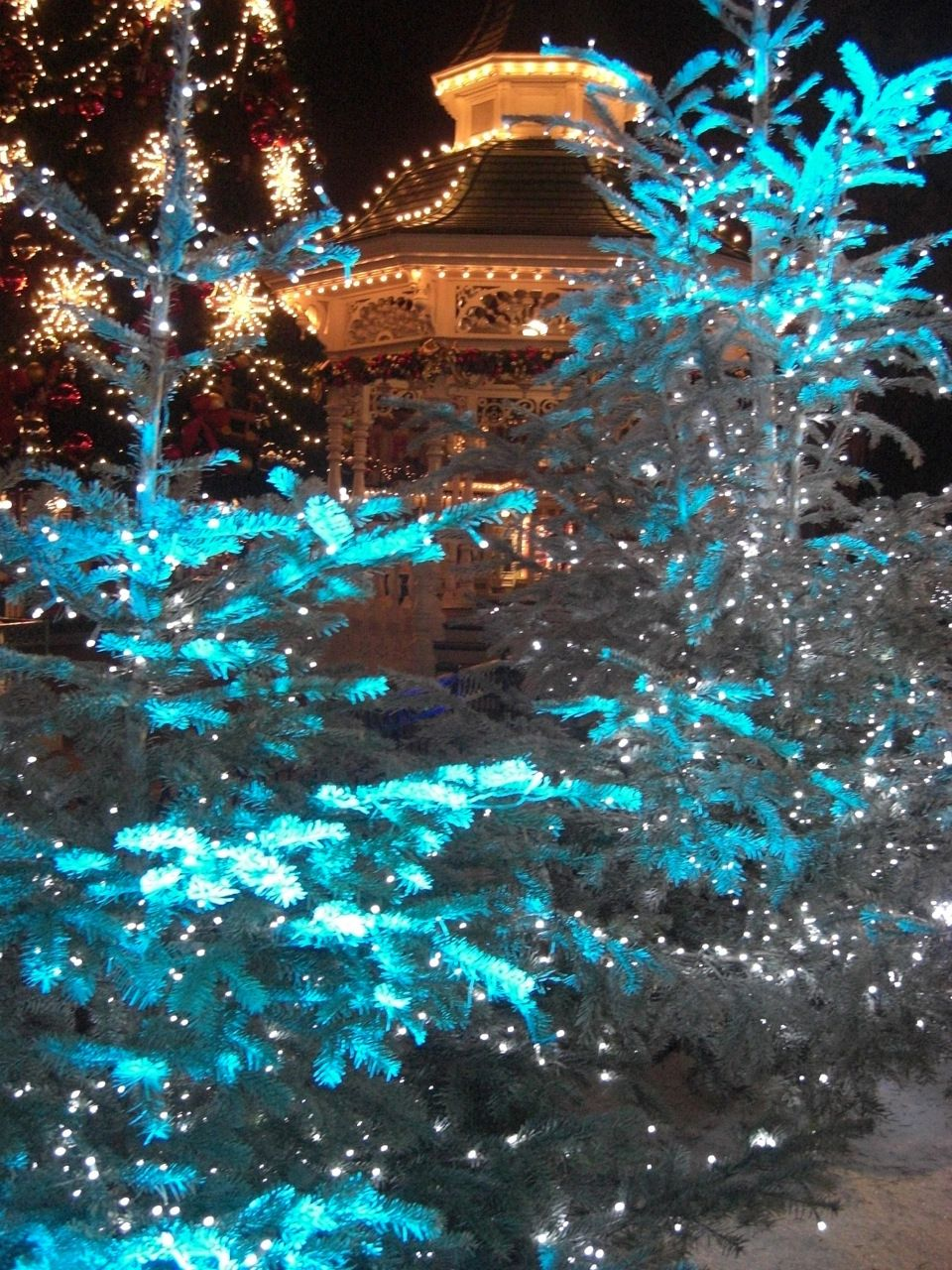 Outdoor turquoise Christmas lighting... Turquoise