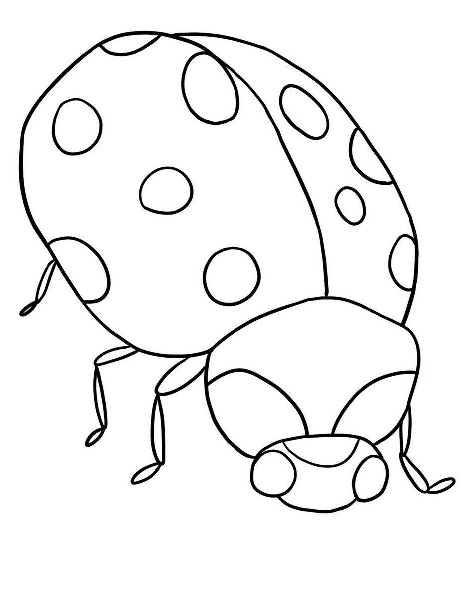 Coloring Page Lady Bug Full Bug Coloring Pages Ladybug Coloring Page Animal Coloring Pages