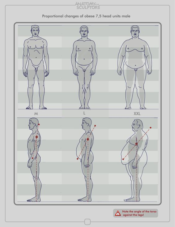 Character Design Collection: Male Anatomy - Daily Art | Anatomy ...