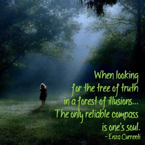 When Looking For The Tree Of Truth In A Forest Of Illusions...The. Soul  SearchingQuotable QuotesMotivational ...