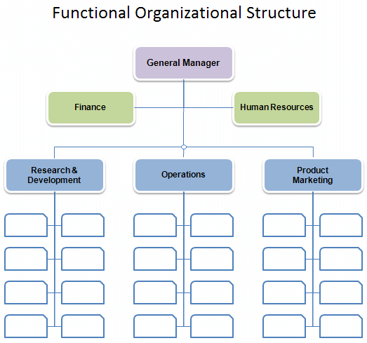 Download The Functional Organizational Structure Chart From Vertex42 Com Organization Chart Organizational Structure Organizational Chart