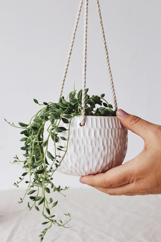 White succulent hanging planter, Ceramic wall planter, Plant hanger, Hanging plant pot, Indoor planter, Plant holder, Modern planter indoor