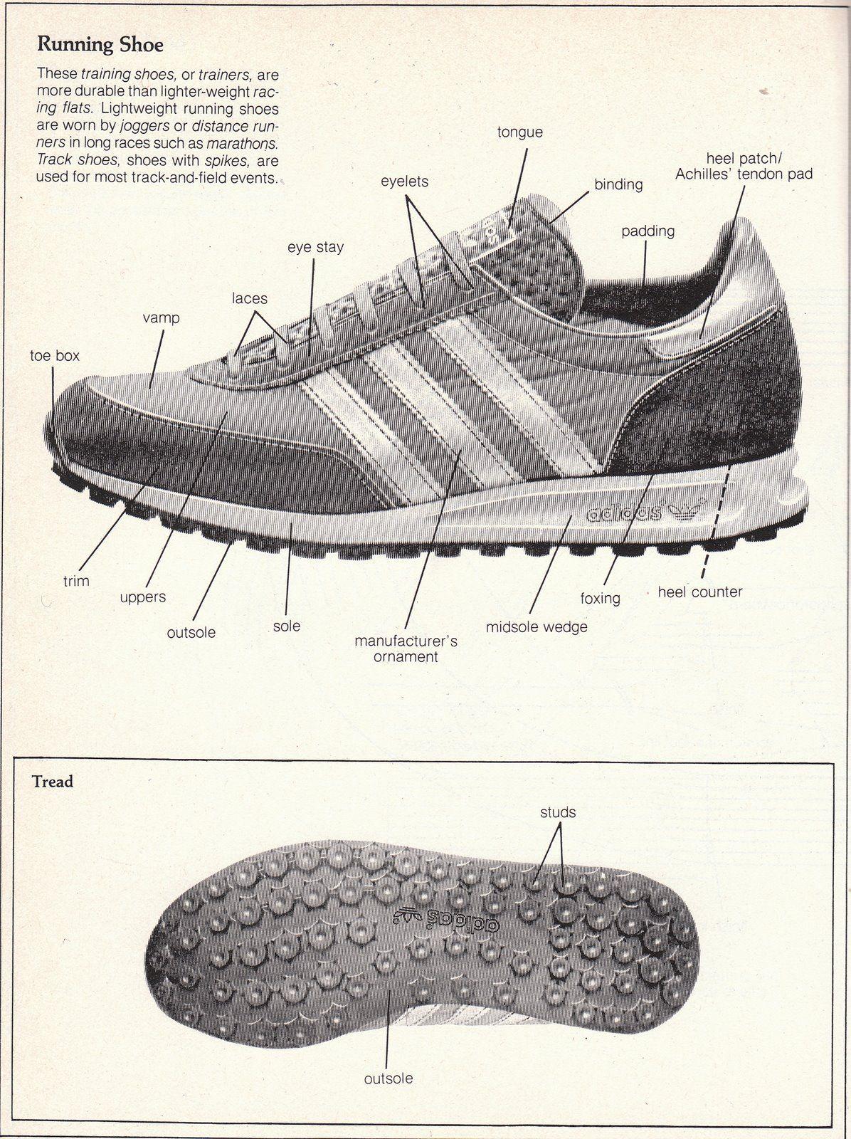 Sneakerish Sneaker Anatomy Footwear Anatomy Pinterest