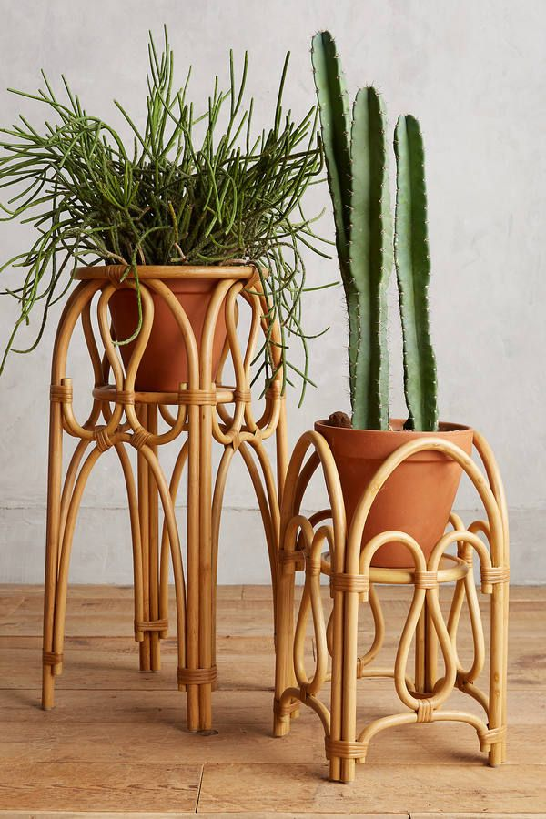 Anthropologie Rattan Plant Stand Flowers Plants
