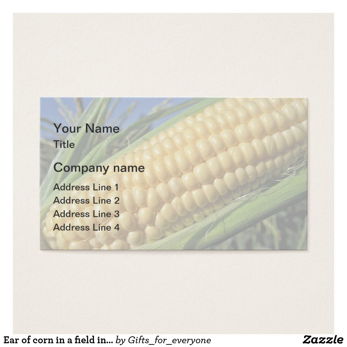 Ear of corn in a field in agriculture farm business card ear of corn in a field in agriculture farm business card magicingreecefo Choice Image