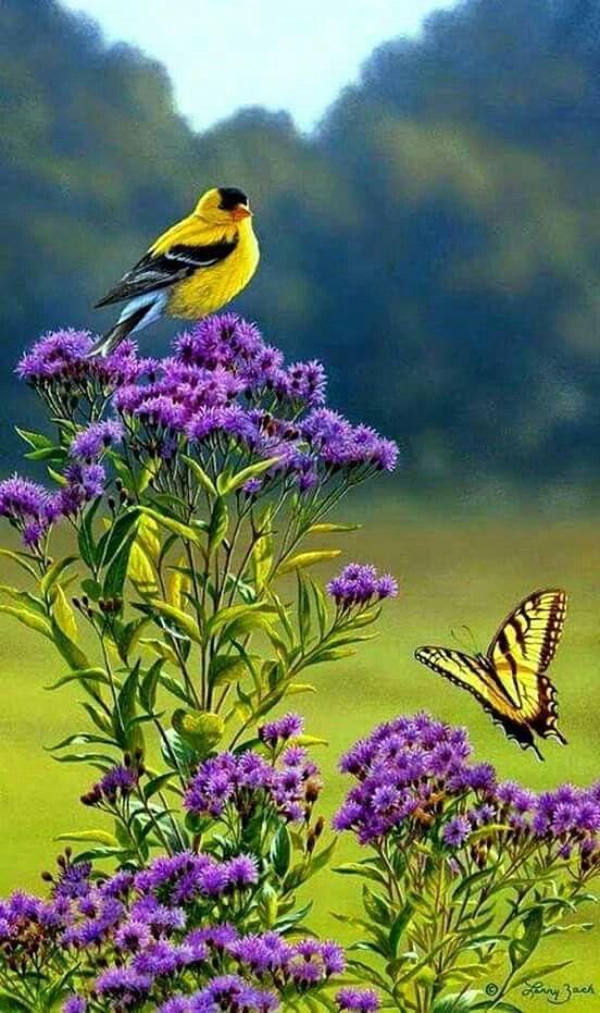 Amazing Nature!