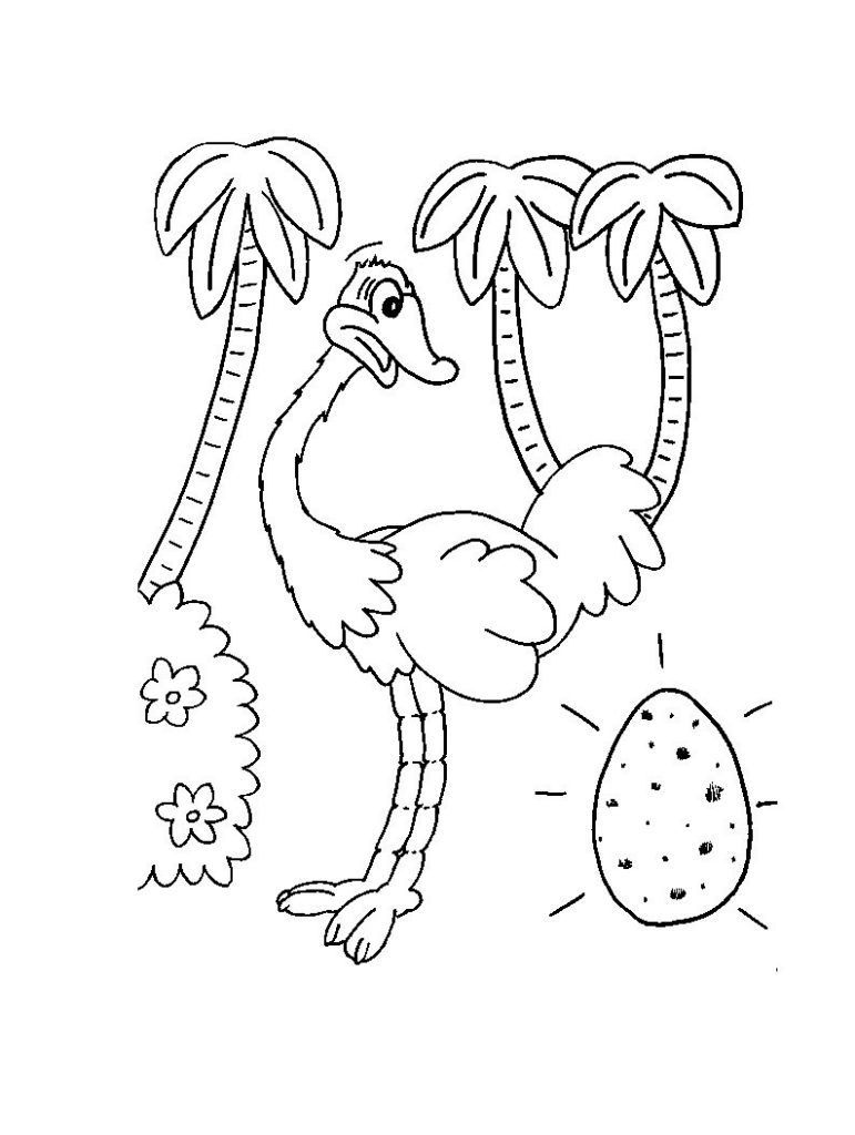 Free Printable Ostrich Coloring Pages For Kids Coloring Pages