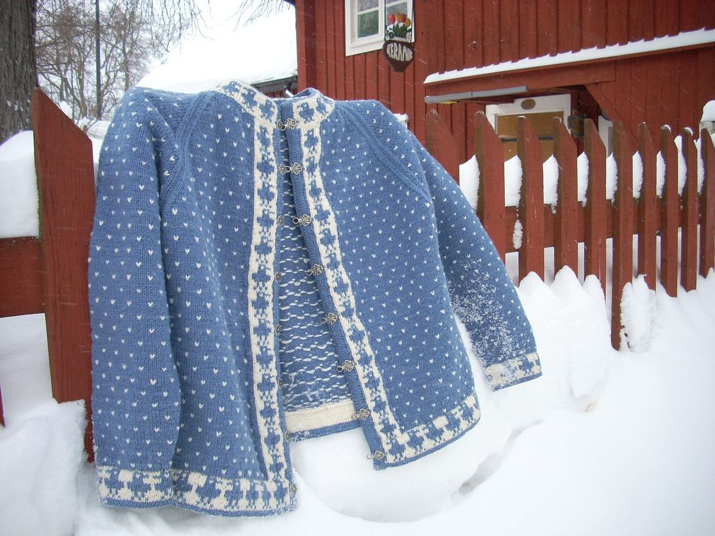 Blue bird cardigan | Bird patterns, Mittens and Bird