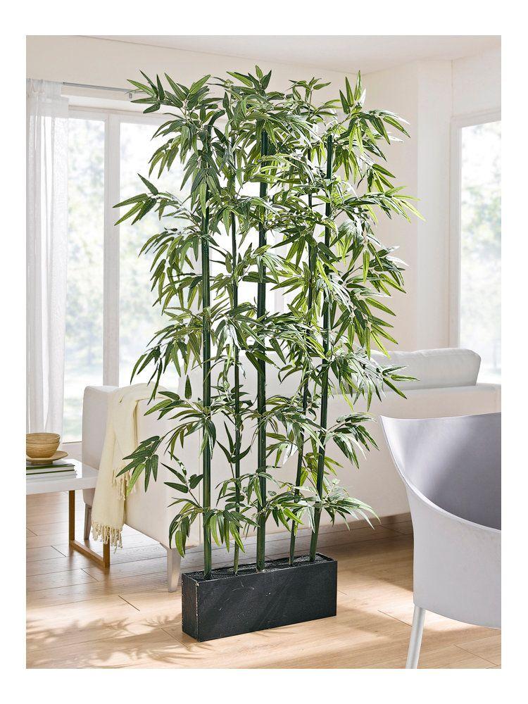 Bambus Raumteiler  Dekoration  Raumteiler pflanzen Wohnzimmer pflanzen und Einrichten und