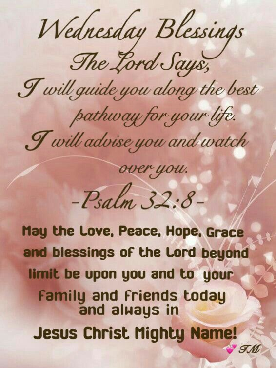 Pin by mary samuels on wednesday blessings pinterest blessings wednesday morning happy wednesday good morning weekday quotes morning blessings daily prayer trust god morning quotes bible scriptures m4hsunfo