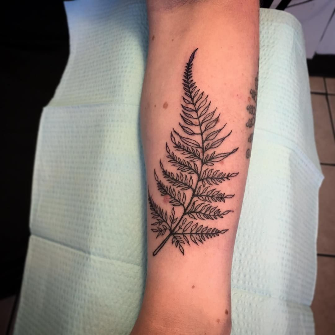 Tattoo Ideas Growth: Fern Tattoo - Growth In Difficult Places