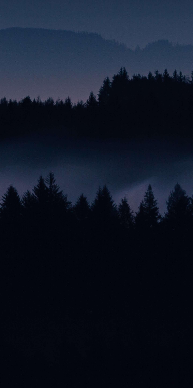 Dark Forest Hd Iphone Wallpaper Darkiphonewallpaper Dark Forest Hd Iphone Wallpaper Darkwallpape Forest Wallpaper Iphone Dark Wallpaper Iphone Dark Wallpaper